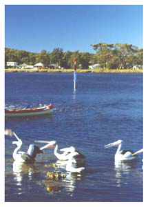 Burrill Lake, South Coast, NSW
